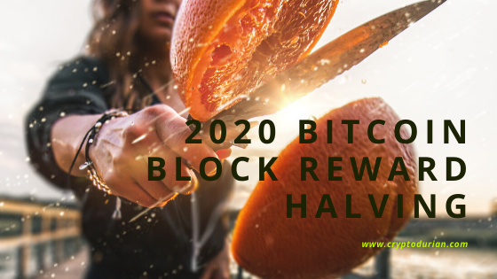 Block reward halving
